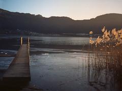Boardwalk in Spittal: winter memories (franz_brocchi) Tags: canondemi halfframe c41 kodakultramax gc goldenhour winter vintageanalog film ice wwwmscfotoit analogicait
