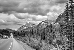 Icefields Parkway (beachwalker2008) Tags: alberta banff jasper canada icefieldsparkway mountains cars road street forest trees clouds sky bw blackandwhite