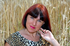 DCS_3862_00051 (dmitriy1968) Tags: portrait портрет nature природа erotic sexsual эротично beautiful girl wife люди people evening придонье девушка отдых путешествия outdoor секси пшеница wheat солнечный день sunny day