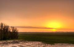 Sunset over the meadows. (Alex-de-Haas) Tags: 1635mm d750 dutch dutchskies hdr holland hollandseluchten lowcountries nederland nikkor nikkor1635mm nikon nikond750 noordholland thenetherlands avond beautiful bloemenveld bright daglicht daylight depthoffield evening field fullframe highdynamicrange kleurrijk laagland landscape landschap lente licht light lucht mooi nature natuur overdag plant polder serene skies sky spring sun sundown sunny sunset tripod zon zonnig zonsondergang