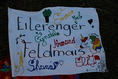 GoUrban_170724_Hamburg Veillée_004