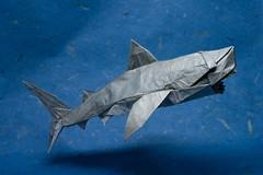 Magnificent Origami Sharks to Celebrate Shark Awareness Day (Origami.me) Tags: origami papercraft paper craft crafts diy fold folding shark sharks sharkweek sharkawarenessday