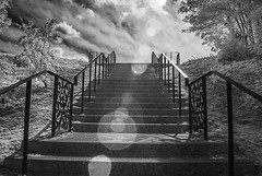 Mountsfield Park (blackwoodse6) Tags: stairs monochrome clouds trees foilage nikon park catford london southeastlondon southlondon mountsfieldpark blackandwhite infrared ir infraredphotography londonparks nikond40