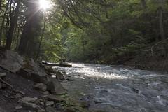 IMG_0114 (zamo86) Tags: nature decew falls niagara st catharines ontario waterfall