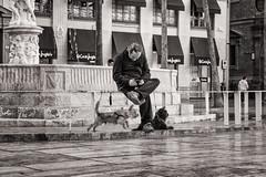 walking the dog ... (Gerard Koopen) Tags: spanje spain malaga city dog walkingthedog mobile bw blackandwhite straat street straatfotografie streetphotography candid streetlive fujifilm fuji xpro2 2017 gerardkoopen littledoglaughednoiret