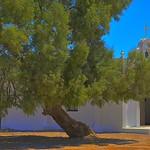 Chapel of Our Lady of Carmen thumbnail