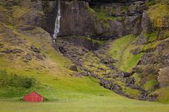 Shelter (Jack Landau) Tags: iceland shelter sheep waterfall water fall nature landscape green grass moss mountain cliff jack landau