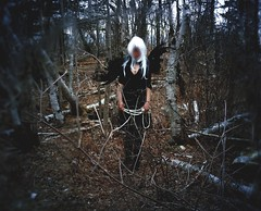 If I am an angel, paint me with black wings (Kat McClelland) Tags: angel broken woods forest trees nature darkart