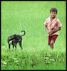 Village boy and his doggie (Indianature14) Tags: monsoon monsoons 2017 july maharashtra nashikdistrict palghardistrict nearmumbai countryside nature indianature rain rains india westernghats monsoongreenery monsoonflora monsoonlandscape ruralindia monsoonwaterfalls vaitarnavalley middlevaitarnaregion modaksagar middlevaitarna middlevaitarnavalley adivasi