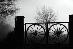 (Walter Daniel Fuhrmann) Tags: niebla fog campo countryside rural arbol tree tranquera blancoynegro blackandwhite bn dark