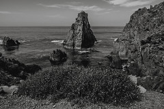 EFE 8 (pedrobueno_cruz) Tags: landscape ensenada méxico explored photography photographer black white angular nikon day moments beach sea sky clouds rocks