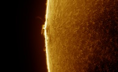 Sun in H-Alpha on 2017-07-17_T_12-42-42-0913_L_lapl4_ap438-AS_P90-ImPPG c (Photon_chaser) Tags: sun sunspots solar spicules sunspot spicule sunsunspots stack achromat alpha andover asi astro quark wollensak prominences protuberance protuberances prominence p