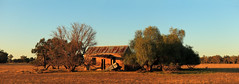 Dry Winter (Darren Schiller) Tags: tomingley abandoned architecture australia building corrugatediron derelict disused decaying deserted dilapidated decay empty evening farming farmhouse galvanisediron history heritage house iron landscape newsouthwales old panorama rural rustic ruins