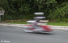 A Harley Davidson too fast. Una Harley Davidson demasiado rápida (A. Muiña) Tags: barrido movimiento velocidad motocicleta motorcycle color efectos callejera strett effects calle airelibre deporte sport picture abstracto abstract nikon nikond800 nikon28300mm