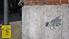 Pol Cosmo / Aalst - 19 jul 2017 (Ferdinand 'Ferre' Feys) Tags: belgium belgique belgië streetart artdelarue graffitiart graffiti graff urbanart urbanarte arteurbano polcosmo pasteup wheatpaste