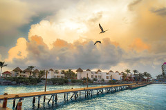 Orange (brian.pipe) Tags: nikon d500 sigma 17 50 isla mujeres mexico cancun mia reef storm orange
