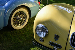 MGA & Allard K2 (faasdant) Tags: 45th annual forest grove concours delegance 2017 pacific university campus classic car automobile show exhibition 1961 mga light blue roadster 1951 allard k2 yellow