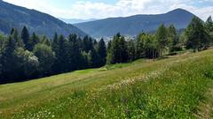 Approaching Truden (aniko e) Tags: truden trodena altoadige südtirol italy italien meadow forest cucul cislon