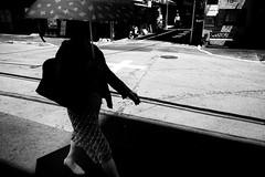cross road (s_inagaki) Tags: snap cross road tokyo japan street umbrella