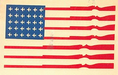 16 hootnoodle (Rocky's Postcards) Tags: usa flag american us rifles protest carbines postcard hootnoodle