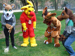 DSC00170 (Thanriu) Tags: fursuit chile meet junta furry santiago friends amigos canid monster avian ave canino monstruo badge angel dragon parrot artic wolf yerik dog