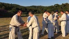 2017_kyokushinhellas_summercamp_1694