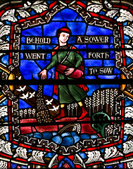 The Sower (Lawrence OP) Tags: biblical parable stainedglass national cathedral washingtondc episcopal sower