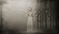 stand alone ... (Aimee Cristole) Tags: theowl furillen neve truth