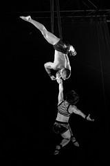 Circus (2 of 1) (L.P.M PHOTOGRAPHY) Tags: handtohand circusaroundtheworld circus circuseverydamnday handstand jensincero cirque working showtime photography repost cirquedusoleil gymnast fitness power tattooed firegirl yoga flex circusnight bnw blackandwhitephotography yingyang mashup state