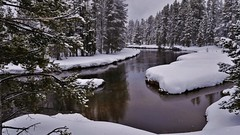 River View After Snowfall (Susan Roehl) Tags: yellowstoneinwinter2017 yellowstonenationalpark wyoming usa river aftersnowfall snow water landscape reflections forest outdoors sueroehl photographictours naturalexposures panasonic lumixdmcgx8 12x35mmlens handheld coth5 ngc sunrays5