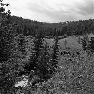 foothills creek valley