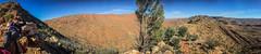 Larapinta Trail Panorama-6