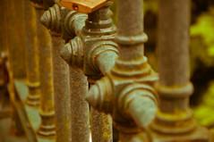 Railed in (Tony Shertila) Tags: 20170629124724 liverpool england unitedkingdom europe britain merseyside city sefton seftonpark railing fence lock padlock abstract gbr