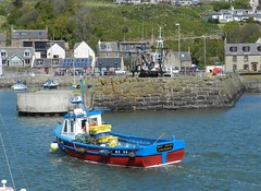 """""""Boy Dane"""" arriving into Gourdon Harbour, Kincardineshire, May 2017 (allanmaciver) Tags: boy dane gourdon north east coast scotland fishing vessel red blue colours yellow walls houses arriving home sea water weather may allanmaciver"""