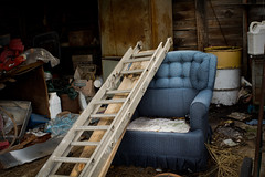 Climbing on the furnature (hutchphotography2020) Tags: ladder stuffedchair barn junk nikon hutchphotography