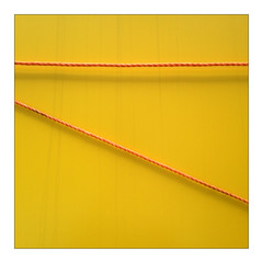 Different Ways (YIP2) Tags: abstract minimal minimalism blue yellow knot knots wire simple less line linea deatil diagonal geometry wall pattern square design