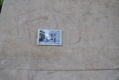 Backtothestreet (emilyD98) Tags: street art insolite rue mur wall urban exploration paris collage photo image photographie photographe back backtothestreet city ville installation