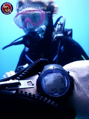 "Kalymnos Diving • <a style=""font-size:0.8em;"" href=""http://www.flickr.com/photos/150652762@N02/36178753131/"" target=""_blank"">View on Flickr</a>"