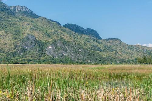 parc national sam roi yot - thailande 93