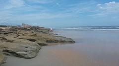 Coquina (dnborgman) Tags: coquina beach atlanticocean ocean sea sand beachcomber
