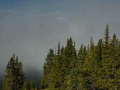 Lake Louise (Garen M.) Tags: banff canada canadianrockies lake lakelouise lakemorraine olympusomdem1 overlook susan zuikopro1440mmf28 mountains water