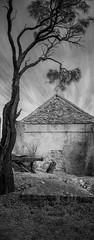 tapestry (liam.jon_d) Tags: mono art artnouveau arty australia australian australianheritage bw baldhillschapel baldhillschurch baldhillscongregationalchapel baldhillscongregationalchurch banner billdoyle blackandwhite bladhills culturalheritage culture decay derelict fleurieu fleurieupeninsula heritage landscape longform monochrome outdoor pennant ruin sa southaustralia southaustralian standard popularimset pickmeset