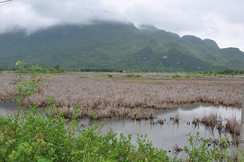 parc national sam roi yot - thailande 28