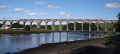 91112 Berwick-upon-Tweed 08/07/2017 (Flash_3939) Tags: 91112 bn26 82223 class91 electric locomotive virgin virgintrains ecml eastcoastmainline berwickupontweed royalborderbridge viaduct 1e08 rivertweed fone rail railway train uk july 2017
