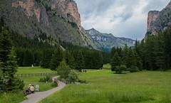 Valley Scenery (bjorbrei) Tags: path pathway trail meadow cliffs mountains forest trees spruces valley vallunga selva valgardena gröden gherdëina tyrol tirol tirolo italy italia dolomites dolomiti dolomiten