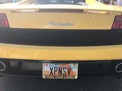 XPNSV (Jeff Weissman Photography) Tags: license plates