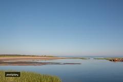 _MG_6835-2 (Alex Chilli) Tags: massachusetts usa america cape cod landscape