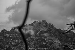 (Joshua Wells Photography) Tags: canon canoncamera t4i 650d teamcanon bowerlens 8mm fisheye landscape mountains mountain arizona az photography desert cactus cacti fog clouds flowers birds hawk flying crows crow storm rain stormclouds