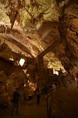 sDSC_4299 (L.Karnas) Tags: slowenien slovenia slovenija sommer summer juli july 2017 postojna cave postojnska jama grotte di postumia höhlen von pivka river inner carniola notranjska littoral