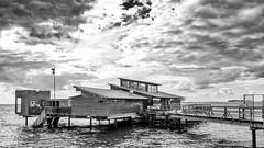 Bjerreds Saltsjöbad Kallbadhus (Guill_B) Tags: beach bjerredssaltsjöbadkallbadhus print restaurant sauna spa sea suède ponton scanie bjärred shore skåne sverige sweden bastu mer pier plage shoreline lomma se